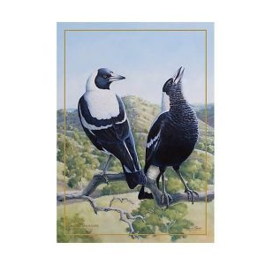 Birds of Australia 10 year Anniversary Tea Towel 50x70cm Magpie by Maxwell Williams